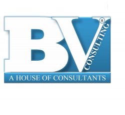 Bright Vision Consulting Services